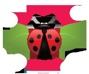 Srem Film Fest